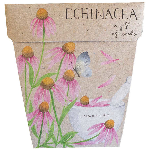 Sow 'n Sow Gift of Seeds - Echinacea