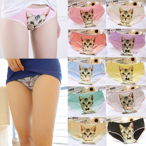 Hot Fashion Lovely Cotton Women Panties Cute 3D Printed Cat Briefs Underwear M/XL Free Shipping-modlily