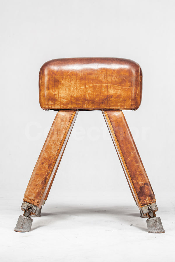 Vintage Leather Gymnastics Bench - Pommel Horse No.2
