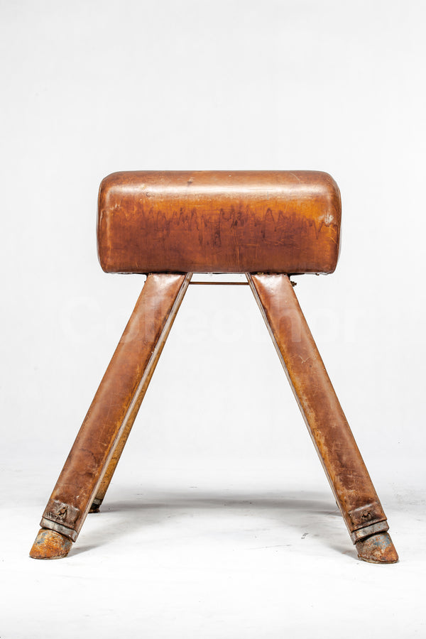 Vintage Leather Gymnastics Bench - Pommel Horse No.3