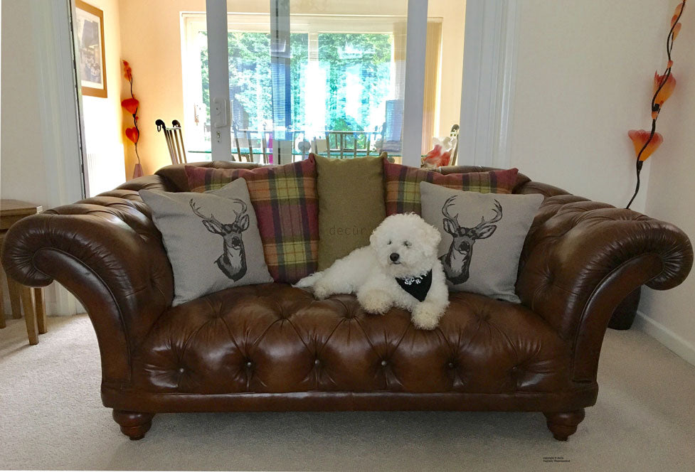 The Gatsby Chesterfield Sofa