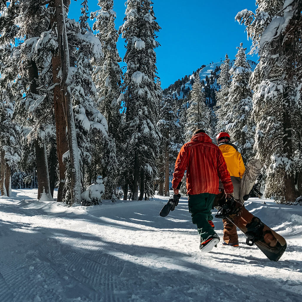 two people carrying snowboards walking through snow covered trees