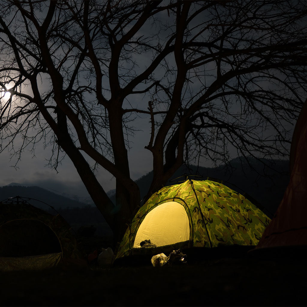 dome tent at nighttime by tree