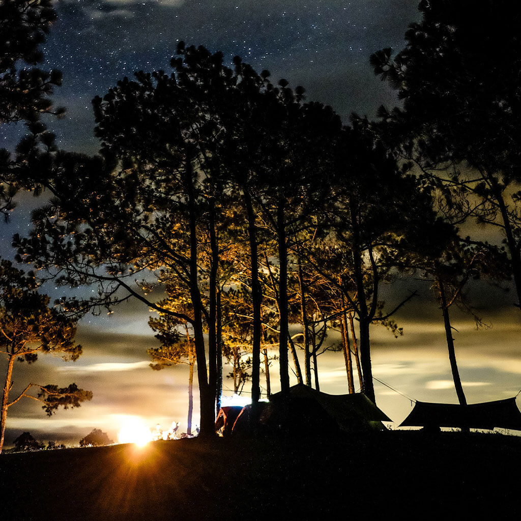 camp silhouette at nightfall