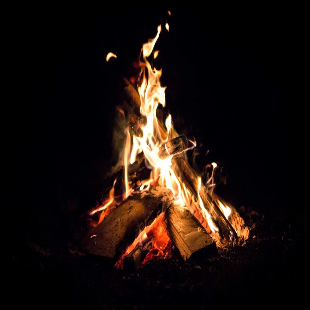 Minimize Campfire Impacts: Leave No Trace Behind in the Woods