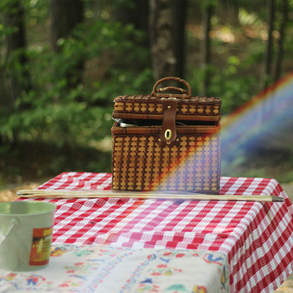 picnic basket on picnic table