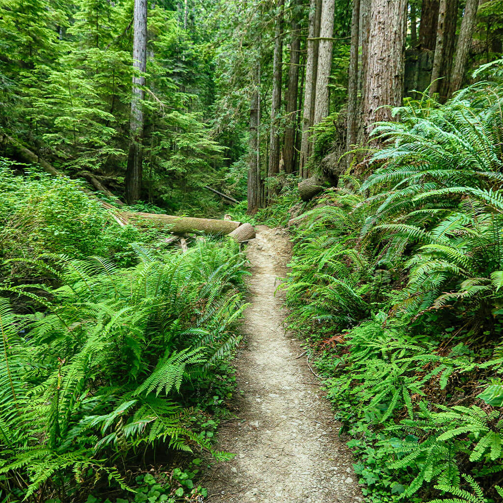 8 Beautiful Hikes Through the Instagram Lens