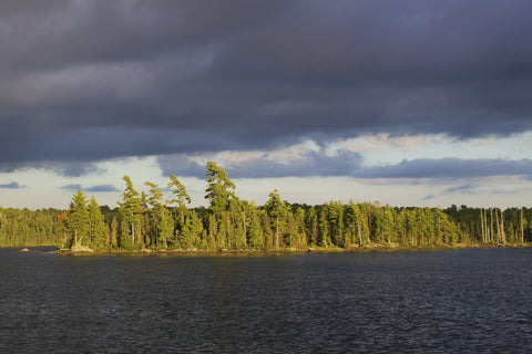 Lake shoreline view from Boundary Waters in Minnesota.