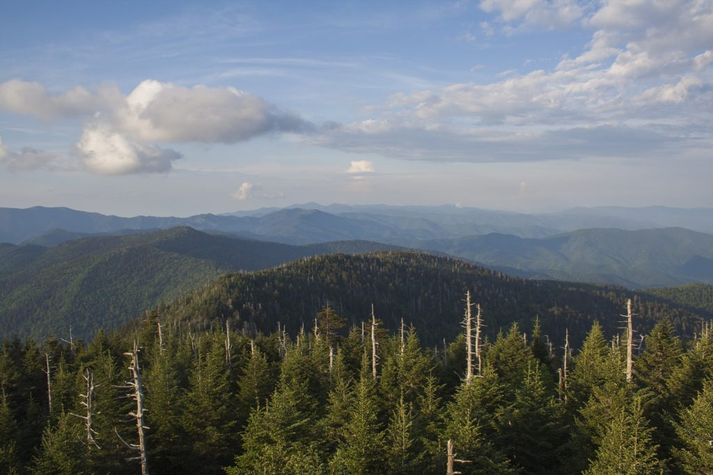 Clingmans Dome overlook peak in the Smoky Mountains.