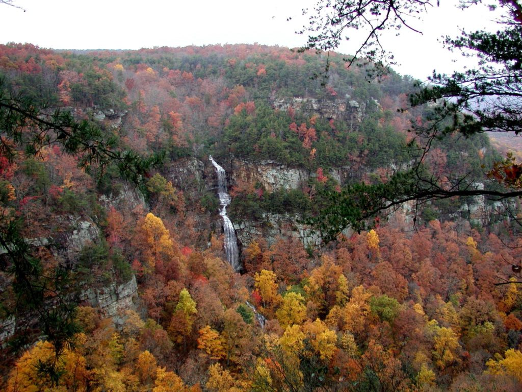 Mountain waterfall through fall foliage at Cloudland Canyon State Park, GA.