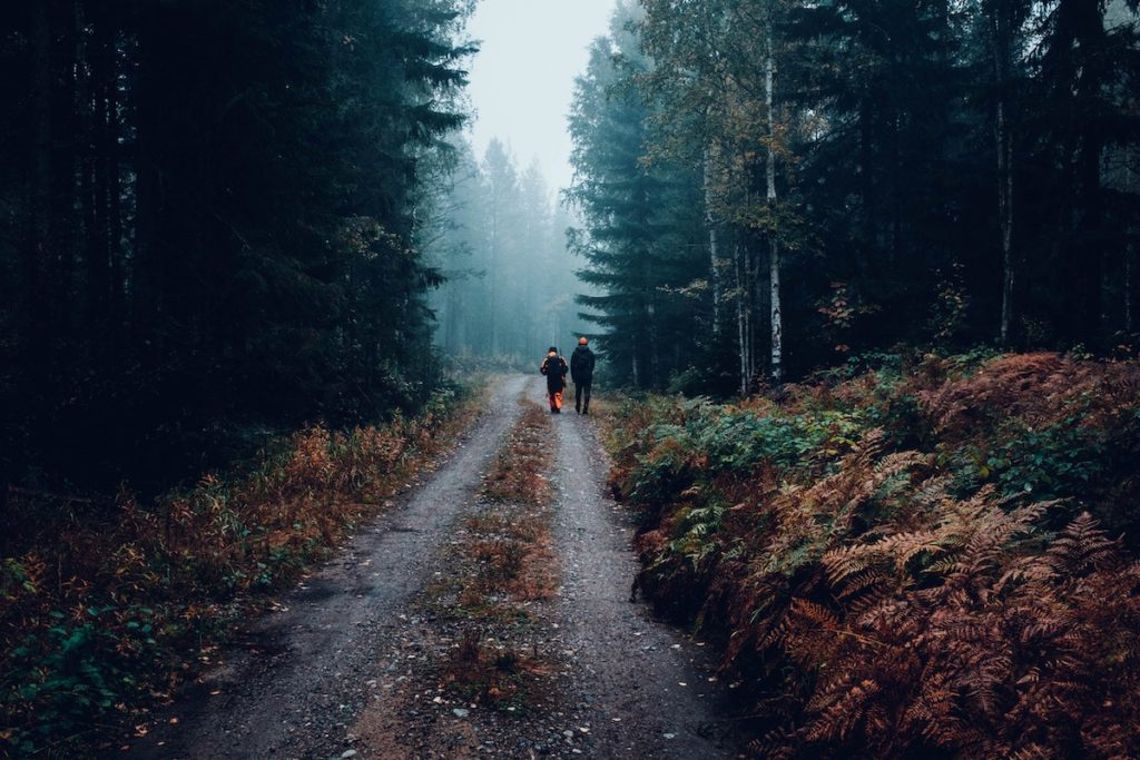 Two people wearing hunter orange walking down gravel road in middle of fog filled forest