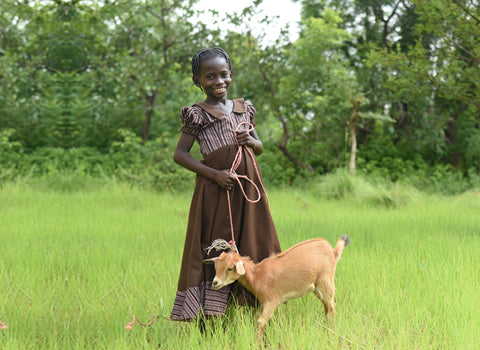 child standing in green grass holding leash that is attached to a goat