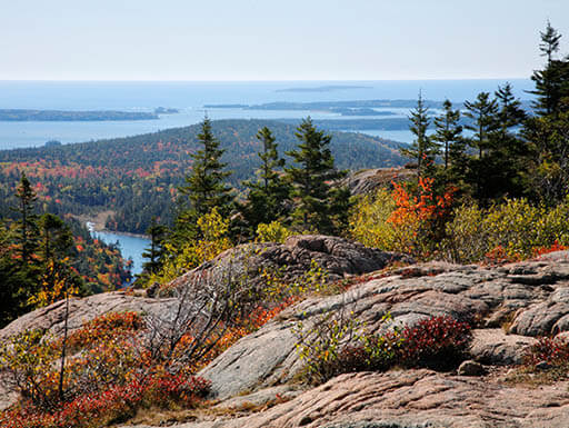 Fall colored trees of coastal mountains by sea in Maine