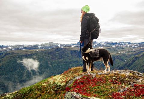 Woman with dog overlooking mountain cliff.