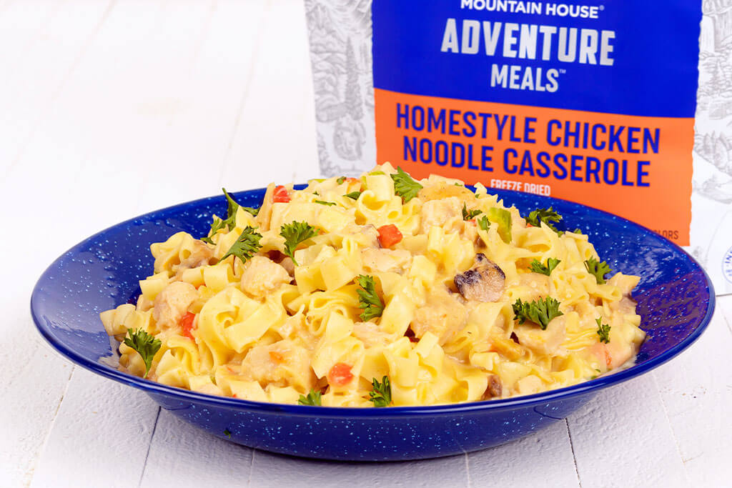 Homestyle Chicken Noodle Casserole - Pouch