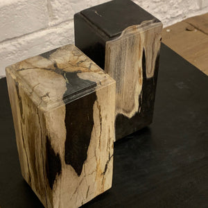 PETRIFIED WOOD PLINTH