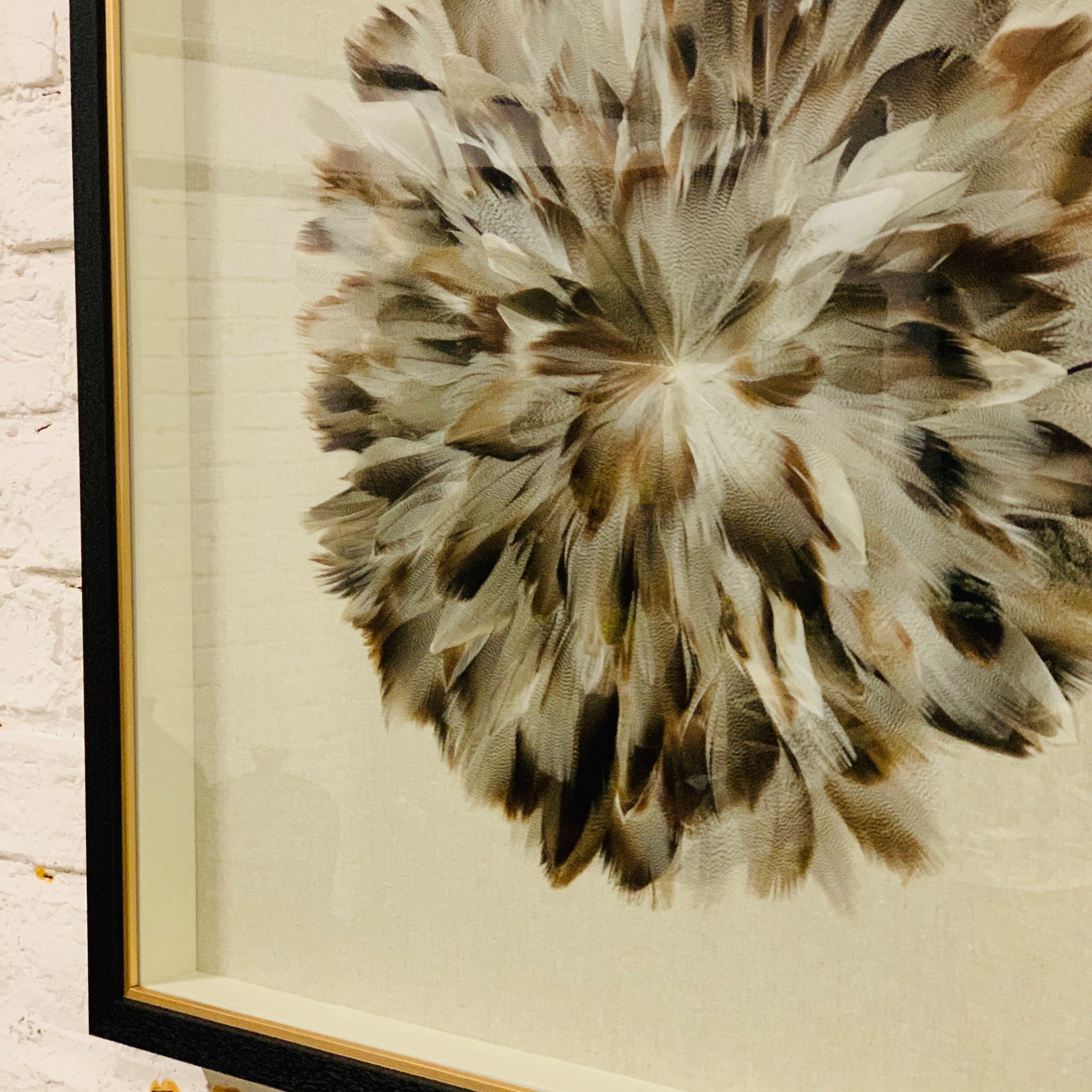 FEATHERED ARTWORK