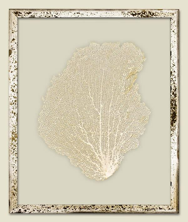 Metallic Gold Sea Fan