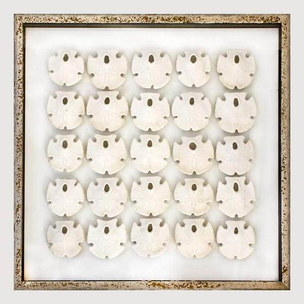 Framed Key Hole Sand Dollars