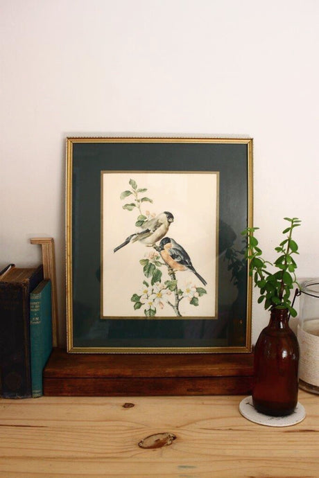 Framed Bullfinch Print