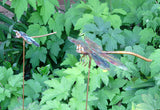 Dragonfly Copper Sculpture by Haw Creek Forge