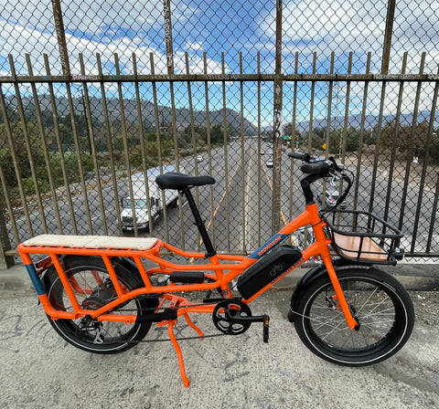 The RadWagon 4 from Rad Power Bikes