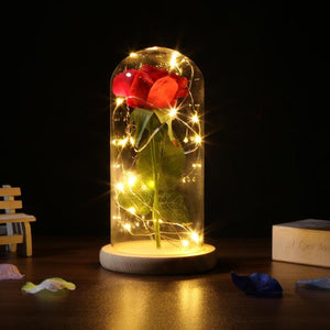Rose Flower Bottle String Lights LED Night Light - Daily Tech Bargains