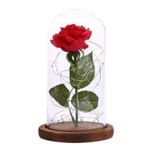 Load image into Gallery viewer, Rose Flower Bottle String Lights LED Night Light - Daily Tech Bargains