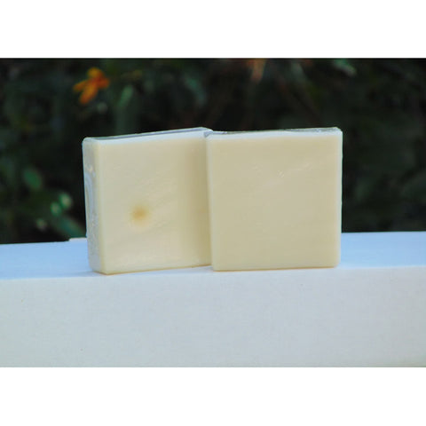 Only Pure Soap Unscented 5.5 oz Bar