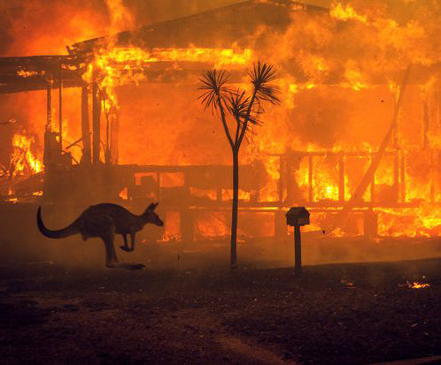 Climate Change is Real: Some Ways to Help Australia