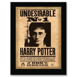 Harry Potter Undesirable No.1 Mounted Sign