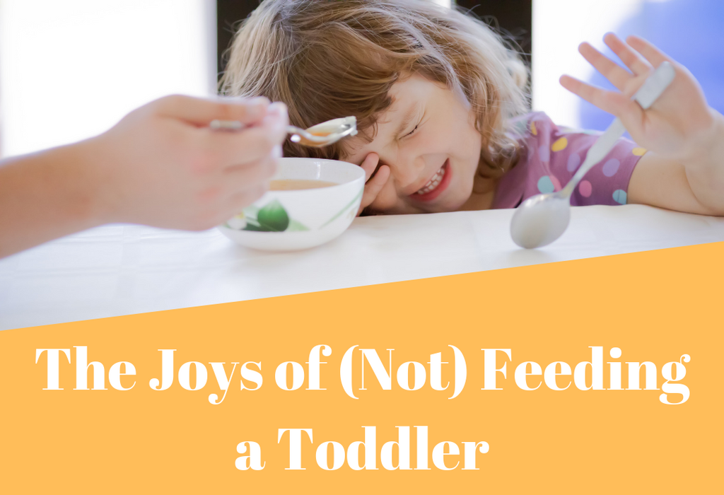 The Joys of (Not) Feeding a Toddler