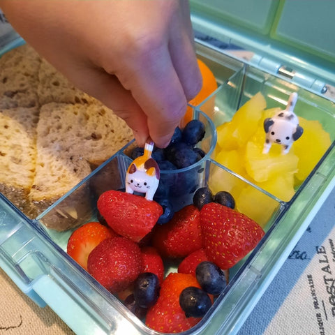 Kids Lunchbox Fun Ideas Dogs and Cats Food Picks