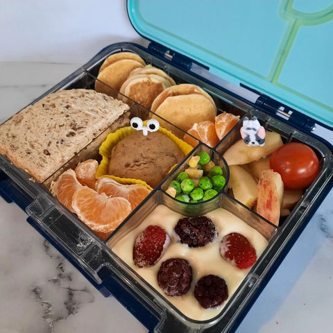Kids Packed Lunch