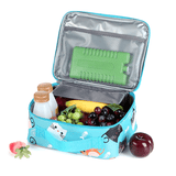 Large Insulated Lunch Bags