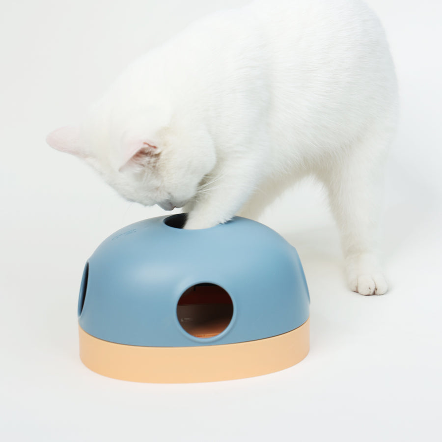 Makesure Hola Cat Toy - Blue