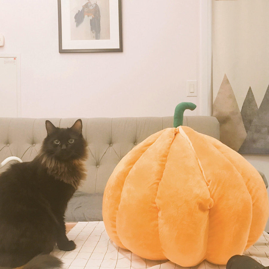 Pumpkin Comfy Pet Bed-Bed-PawPawDear