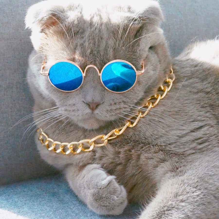 Cool Gold Necklace-Accessories-PawPawDear