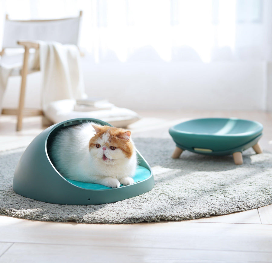 MAKESURE Daifuku Multi-functional All Seasons Pet Bed - Moss Green - Pet Supplies - PawPawDear