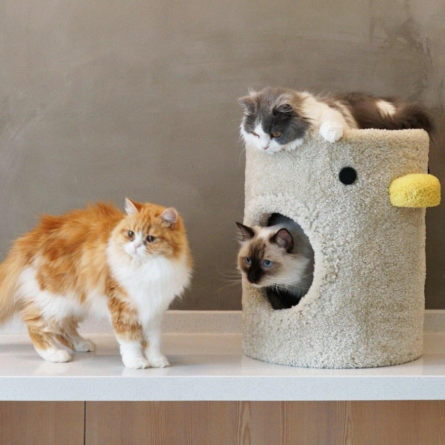 Little Chick Cat Bed Cat Tree Ottoman 3 in 1 - Pet Supplies - PawPawDear