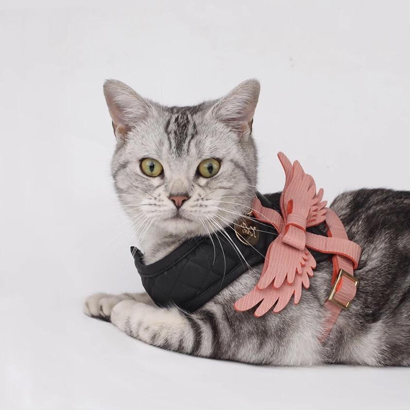 Angel Body Harness with Leash - Pet Supplies - PawPawDear