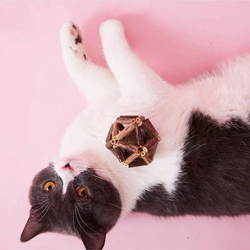 Silvervine Cat Toy-Cat Toys-PawPawDear