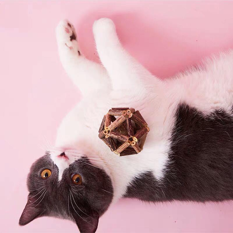 Silvervine Cat Toy - Pet Supplies - PawPawDear