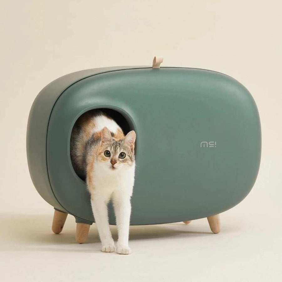 Makesure Cat Litter Box - MOSS GREEN - Pet Supplies - PawPawDear