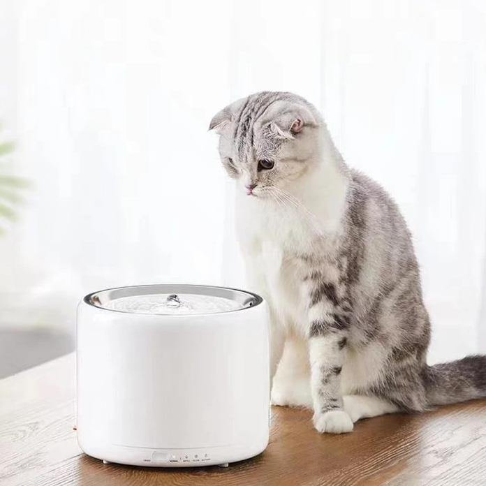PETKIT Eversweet Smart Water Fountain Gen 3.0-Bowls-PawPawDear