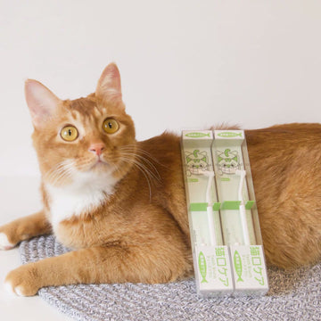 Easy to Use Pet Toothbrush [Cat]-Dental-PawPawDear