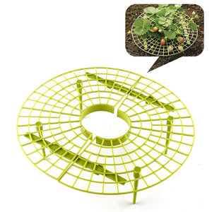 Yellow Handy Strawberry Supports for Your Garden