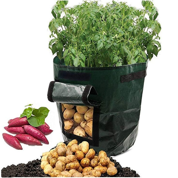 Potato Grow Container Bag DIY Planter Vegetable Gardening