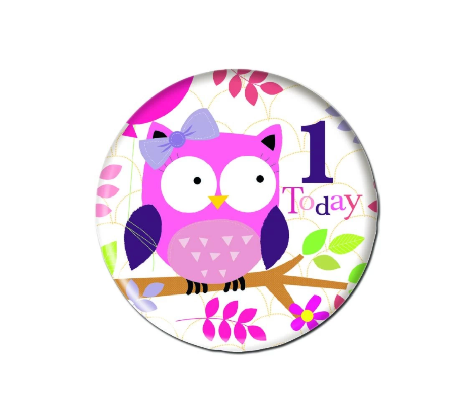1st Birthday Owl Badge