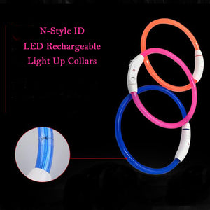 Rechargeable LED Light Up Dog Collar